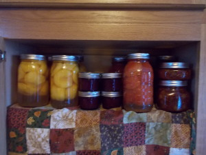 Canning Tomatoes, Peaches, and Concord Grapes
