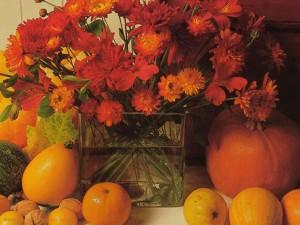 Flower-Wallpapers-Hd-119
